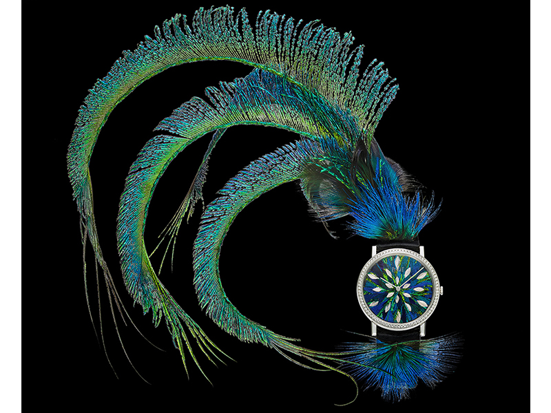 Piaget Feather Altiplano