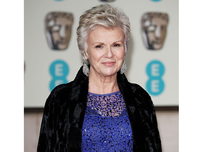 Star Diamond Julie Walters wore leaf diamonds earrings.