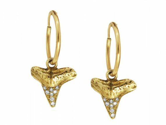 Rachel Boston - Shark tooth earrings mounted on yellow gold with diamonds ~ GBP£ 450