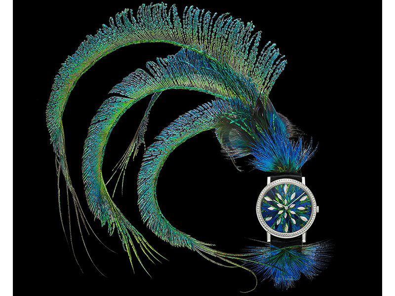 Piaget Feather Altiplano watch