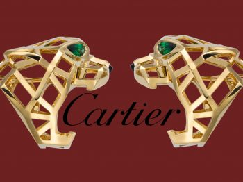 Size Adjustment of Cartier Rings: Can Cartier Rings Be resized?