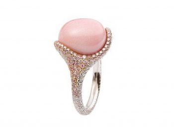 Conch Pearl: Everything You Need To Know!