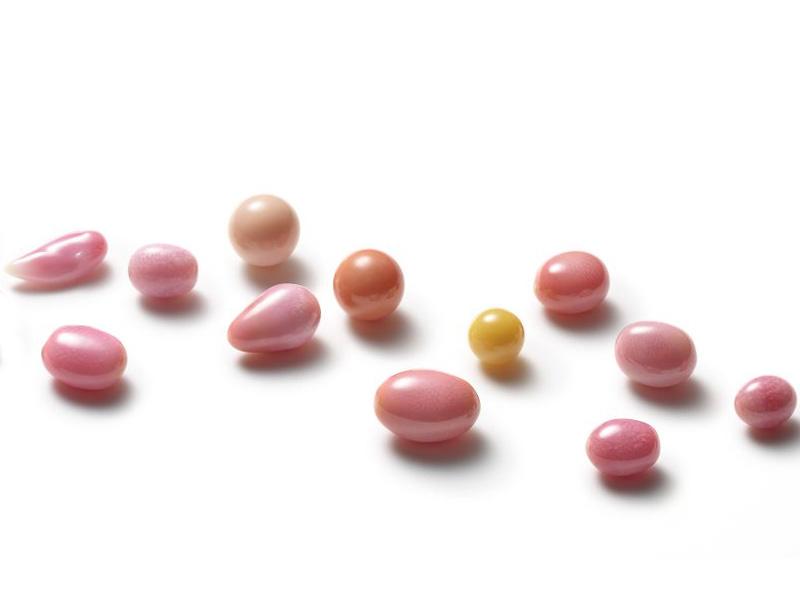 Perles Conches Multicolores