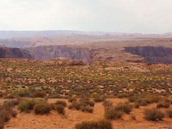 Un desert de pierres