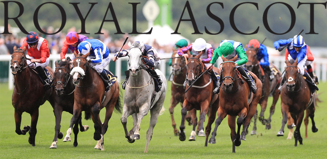 royal ascot cover
